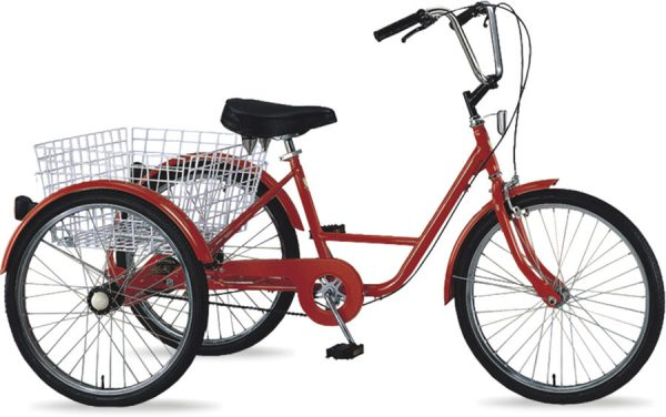 Tricycle 24» 5sp.